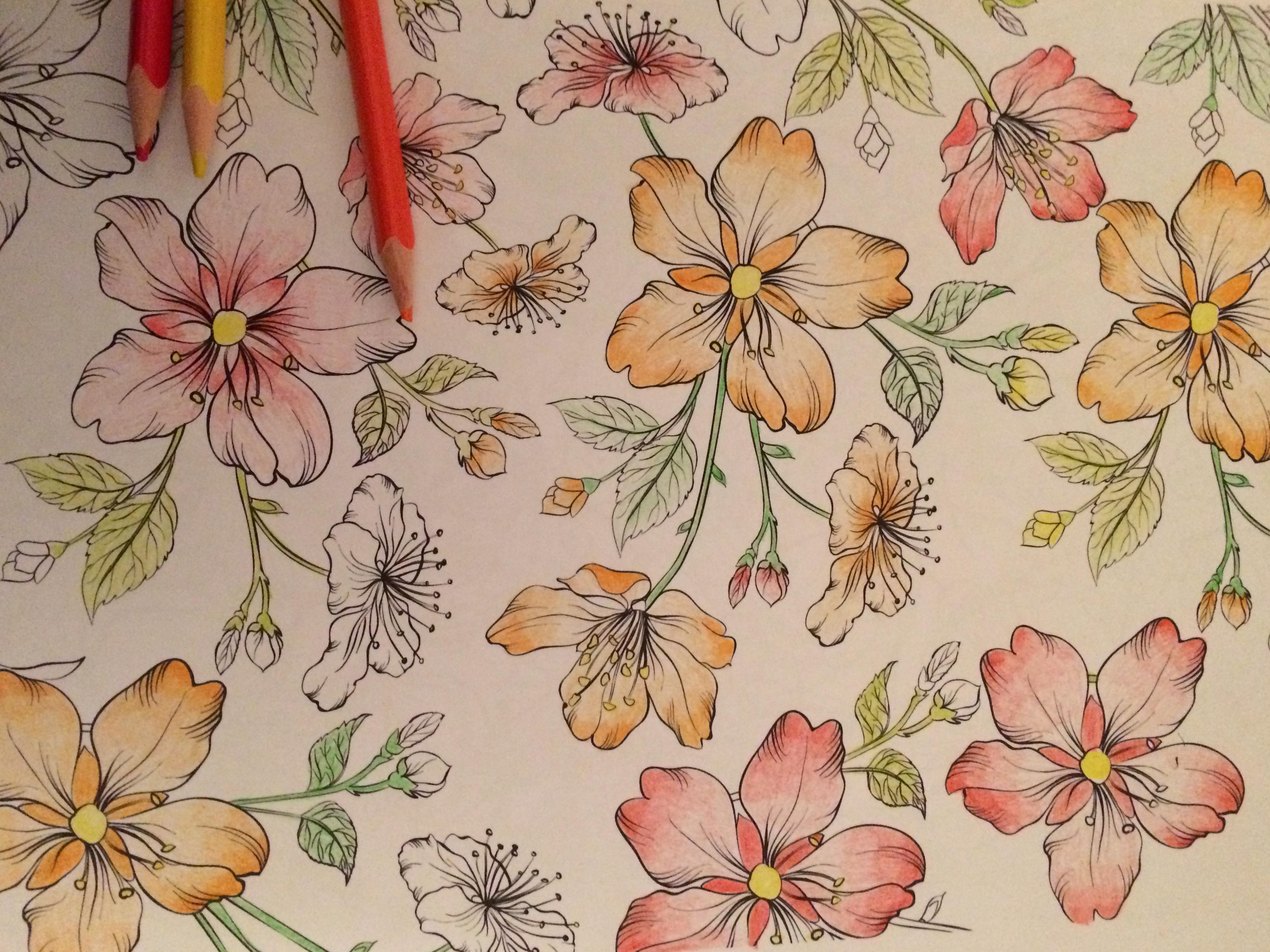 J aime les fleurs mais il y en a pour tous les go ts