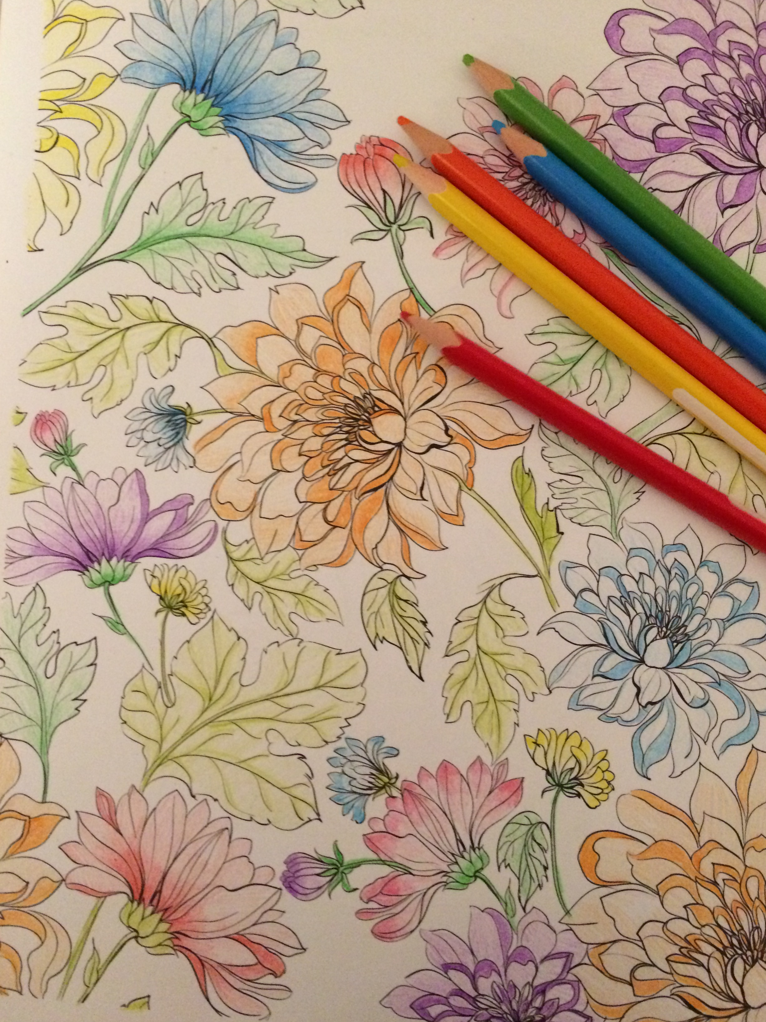 Coloriage Adulte Fini.Coloriage Pour Adultes La Detente Loin Des Ecrans Pretty Little